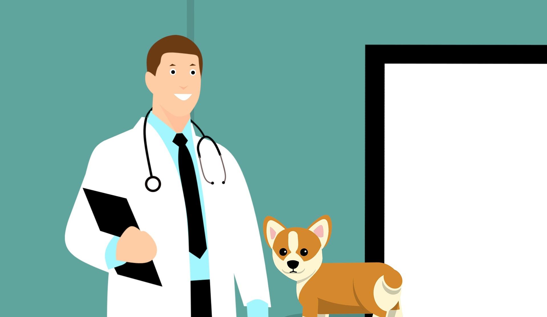 Avantages du plan d'epargne retraite pour vétérinaires vs contrat madelin